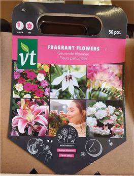 Bulbes utiles Jardin Parfumé (VT)