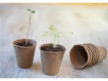 Pots ronds 6 cm * 24 pc biodégradable