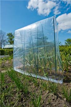 Film de croissance pour tomates, cocombres, haricots, 4 / 3.5 m