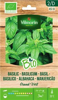 Basilic Grand vert BIO (Vilm)