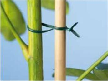 Lien plastique armé vert - 100 m